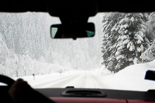 Zimowa śnieżna sceneria wewnątrz samochodu. świerki po śniegu. zimowa ucieczka, koncepcja lokalnej turystyki