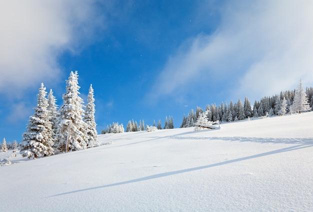 Zimowa szadź i pokryte śniegiem jodły na zboczu góry na tle błękitnego nieba