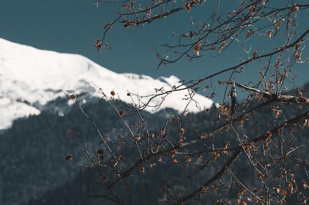 Zimowe góry krasnej polany