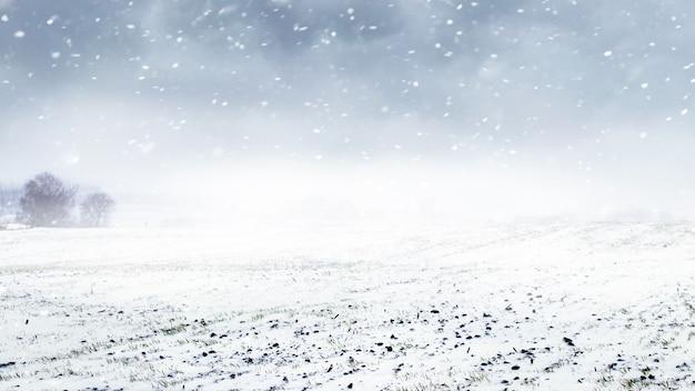 Zimowe pole z pochmurnym niebem podczas opadów śniegu