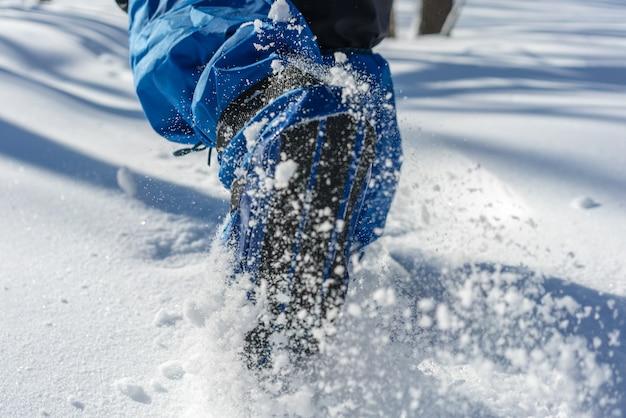 Zimowe wędrówki w głębokim śniegu w lesie