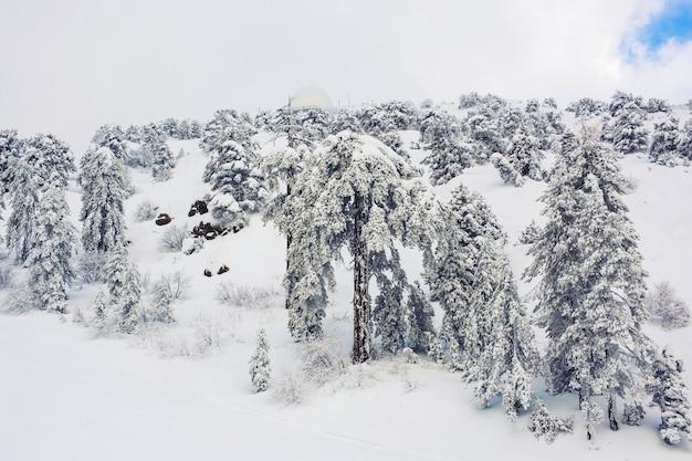 Zimowe zaśnieżone góry