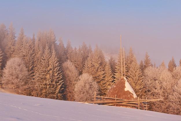 Zimowy krajobraz drzewa i ogrodzenie w szronie, tło z delikatnymi pasemkami i płatkami śniegu