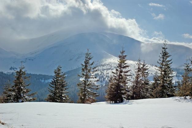 Zimowy krajobraz górski mountain goverla to najwyższy szczyt ukraińskich karpat