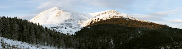 Zimowy krajobraz górski o wczesnym świcie (ukraina, karpaty, góra petros)