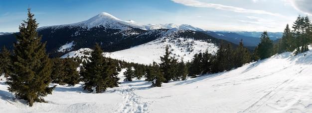 Zimowy krajobraz górski (widok panoramy 180 stopni na goverla mountain, ukraina, karpaty). lewa strona panoramy fotografowana naprzeciwko słońca (nieznacznie prześwietlona)