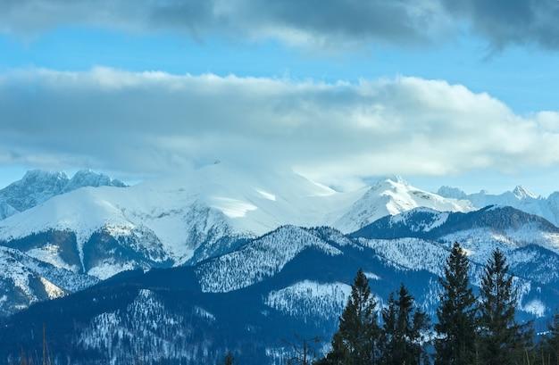 Zimowy krajobraz górski z jodłowym lasem na stoku
