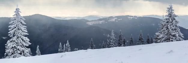 Zimowy krajobraz górski z pokrytymi śniegiem sosnami