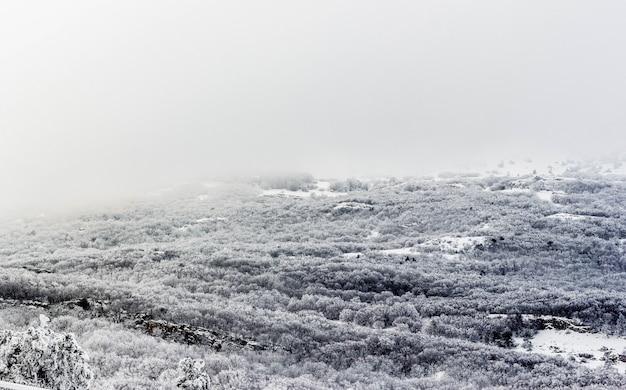 Zimowy krajobraz, góry pokryte śniegiem.