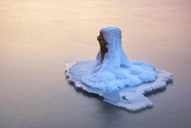 Zimowy krajobraz. kompozycja natury.
