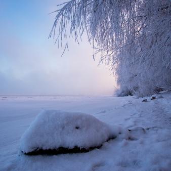 Zimowy krajobraz o świcie, brzeg zamarzniętej rzeki. wiszące gałęzie drzew, piękne niebo, wielka skała.