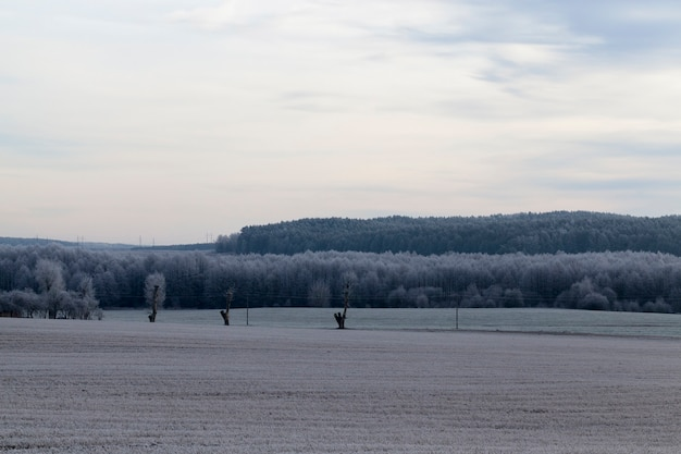 Zimowy krajobraz o zmierzchu