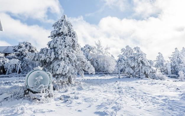 Zimowy krajobraz. ośnieżony las w górach