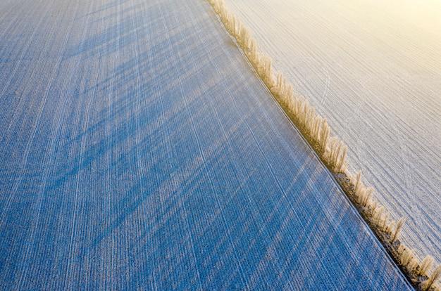 Zimowy krajobraz. puste pola rolnicze i drzewa pokryte śniegiem.