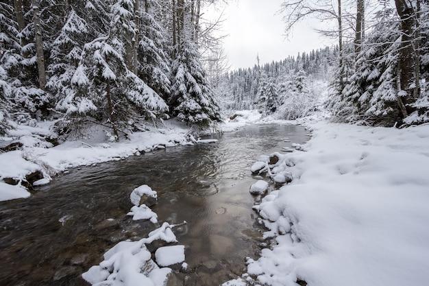 Zimowy krajobraz rzeki