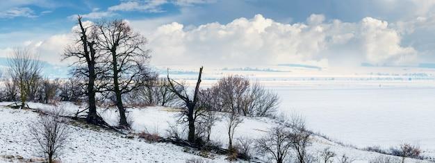Zimowy krajobraz z ciemnymi sylwetkami drzew w pobliżu ośnieżonej rzeki i białymi chmurami na niebiesko w pogodny mroźny dzień