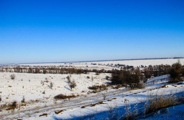 Zimowy krajobraz z drzewami i wzgórzami