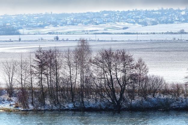 Zimowy krajobraz z drzewami nad rzeką w pobliżu zaśnieżonego pola