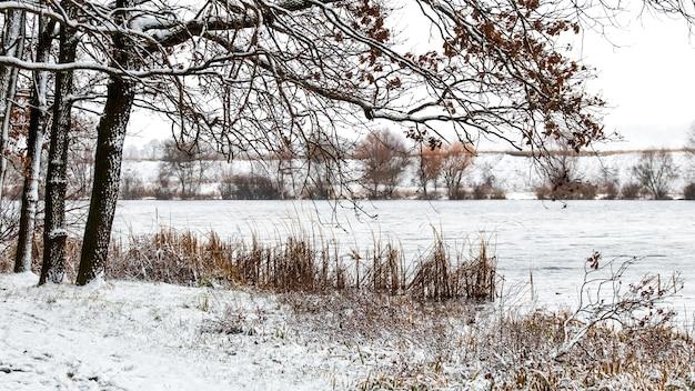 Zimowy krajobraz z drzewami nad rzeką