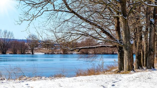 Zimowy krajobraz z lasem nad rzeką przy słonecznej pogodzie