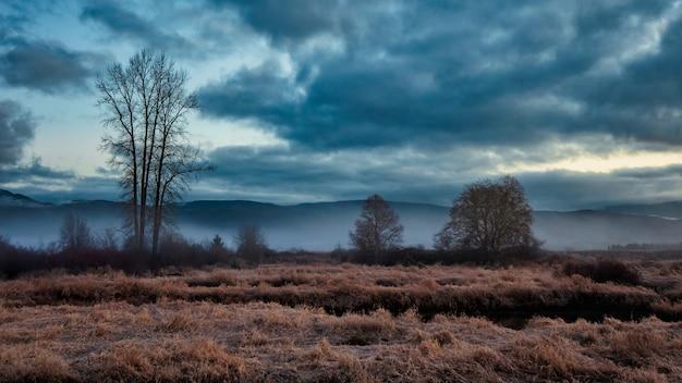 Zimowy krajobraz z pochmurnego nieba