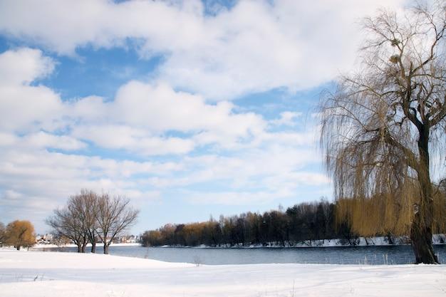 Zimowy krajobraz z pokrytymi śniegiem brzegami rzeki