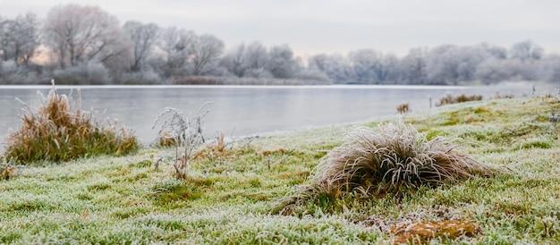 Zimowy krajobraz z rzeką i pokrytą szronem trawą na brzegu rzeki, panorama