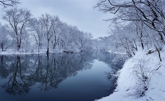Zimowy krajobraz z rzeką w lesie.