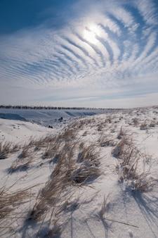 Zimowy krajobraz ze stepem przykryty śniegiem