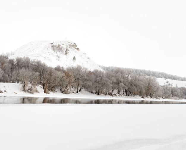 Zimowy las nad brzegiem donu na tle kredowych gór marznie