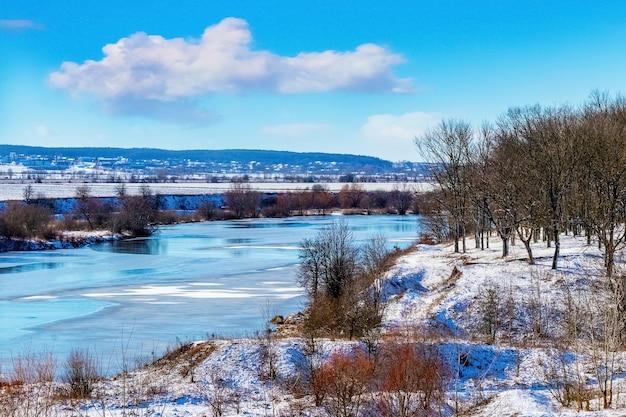Zimowy las nad rzeką przy słonecznej pogodzie