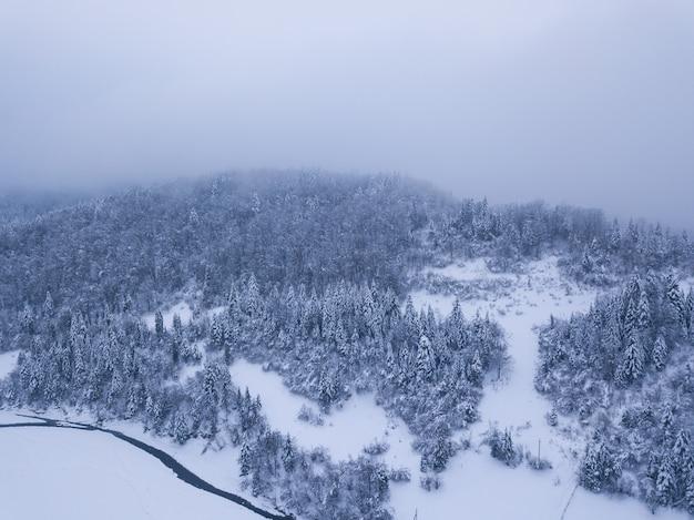 Zimowy las z mroźnych drzew i trochę meandrujący strumień, widok z lotu ptaka.