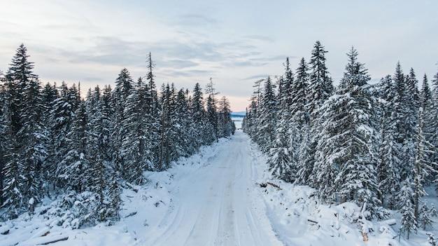 Zimowy las z ośnieżonymi drzewami, widok z lotu ptaka. zimowa przyroda, powietrzny krajobraz z zamarzniętą rzeką, drzewa pokryte białym śniegiem