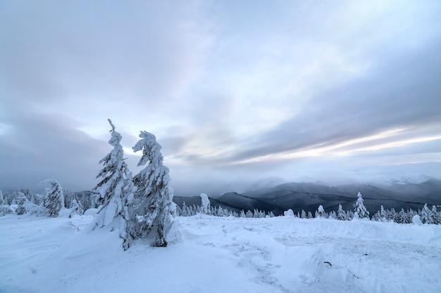 Zimowy niebieski krajobraz