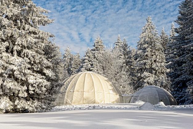 Zimowy pejzaż z chatami