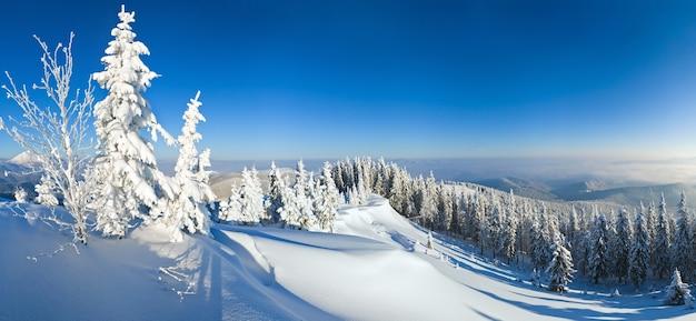 Zimowy spokojny krajobraz śnieżny górski (karpaty, ukraina).