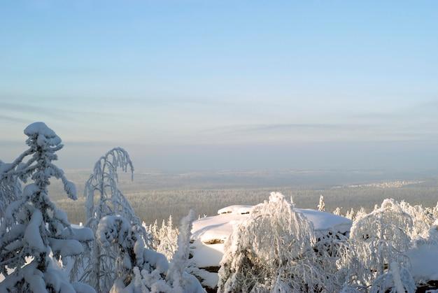 Zimowy zalesiony krajobraz z widokiem z lotu ptaka ze szczytu góry