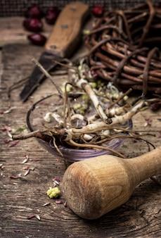 Zioła lecznicze i korzenie