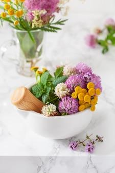 Zioła lekarskie kwiaty w moździerzu. medycyna alternatywna. koniczyna wrotycz pospolity tymianek