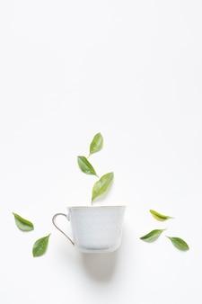 Ziołowa zielona cytryna opuszcza nad herbacianą filiżanką przeciw białemu tłu