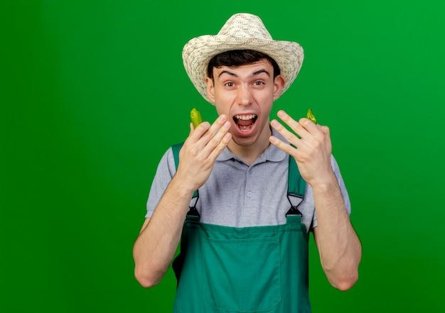 Zirytowany młody ogrodnik męski w kapeluszu ogrodniczym trzyma ostrą paprykę