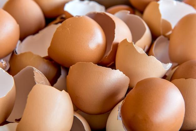 Złamane tło tekstury skorupki jajka.