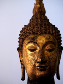 Złocisty buddha staue bielu tło