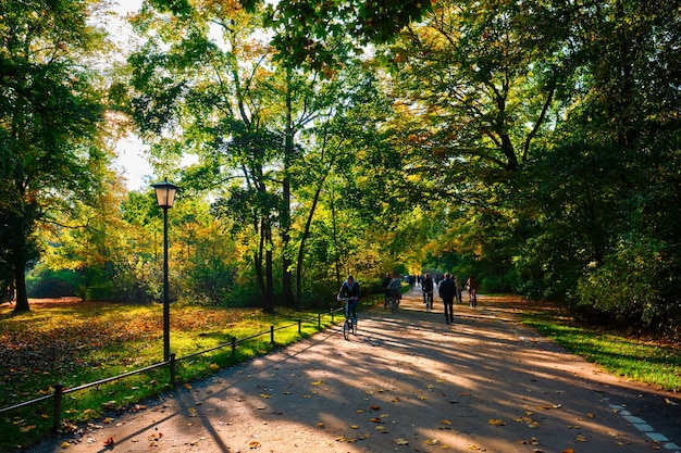 Złota jesień październik w słynnym monachijskim parku publicznym englishgarten munchen bawaria niemcy