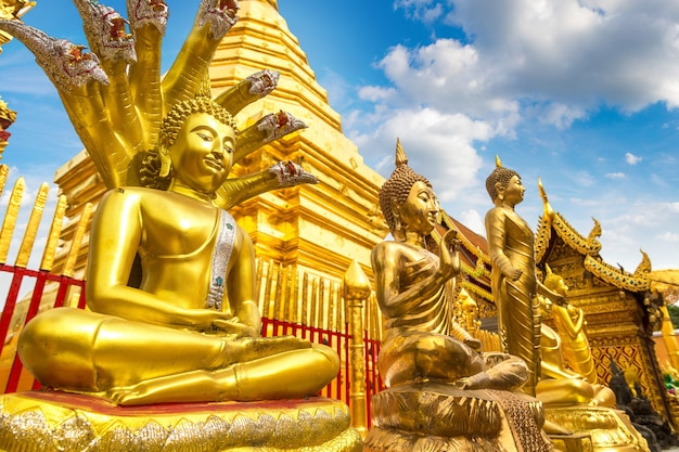 Złota pagoda wat phra that doi suthep w chiang mai