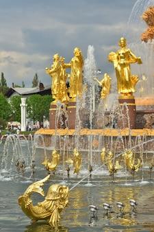 Złota rybka w fontannie przyjaźni narodów w parku