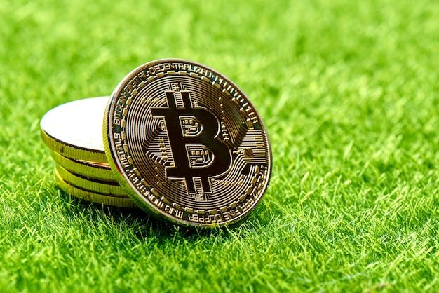 Złote bitcoiny na zielonym trawniku