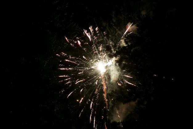 Złote i żółte fajerwerki na tle ciemnego nieba. fajerwerki na cześć święta, nowy rok, boże narodzenie 2017. piękne duże fajerwerki na nocnym niebie