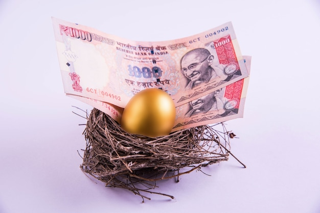 Złote jajko w gnieździe pełnym gotówki, w tym banknotów o wartości 1000 rupii indyjskich