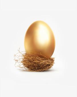 Złote jajko w gnieździe